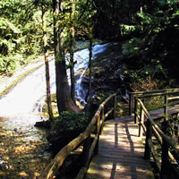 bridge in Cliff Gilker Park